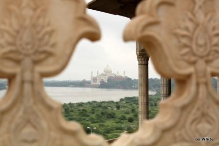 TAj Mahal z Agra Fortu