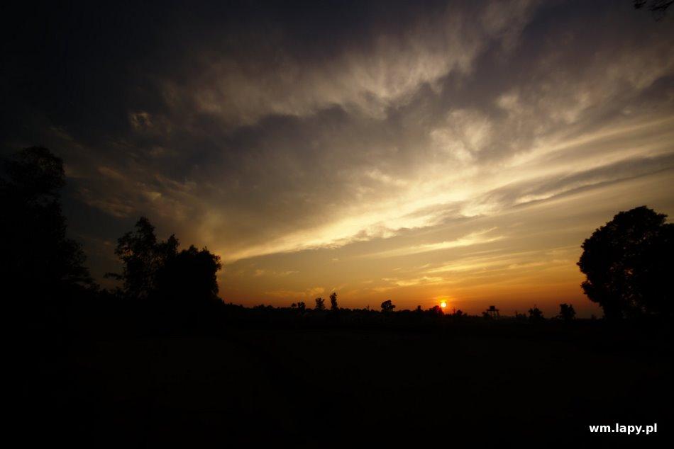 Dhanwār, Madhya Pradesh, India