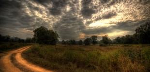 [Trip 7]Khana National Park