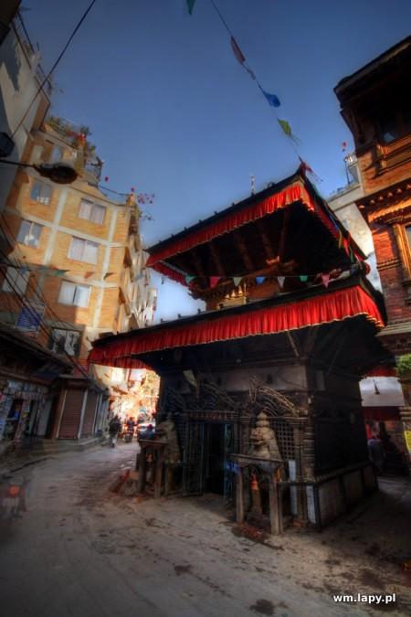 Jawlakhel, , Nepal