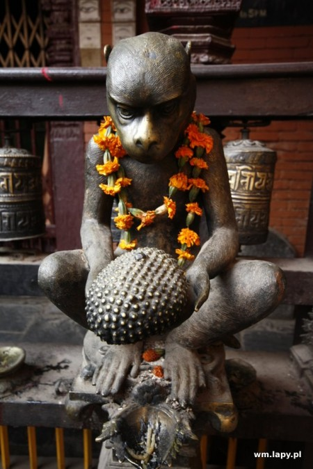 Jawlakhel, Patan, Nepal